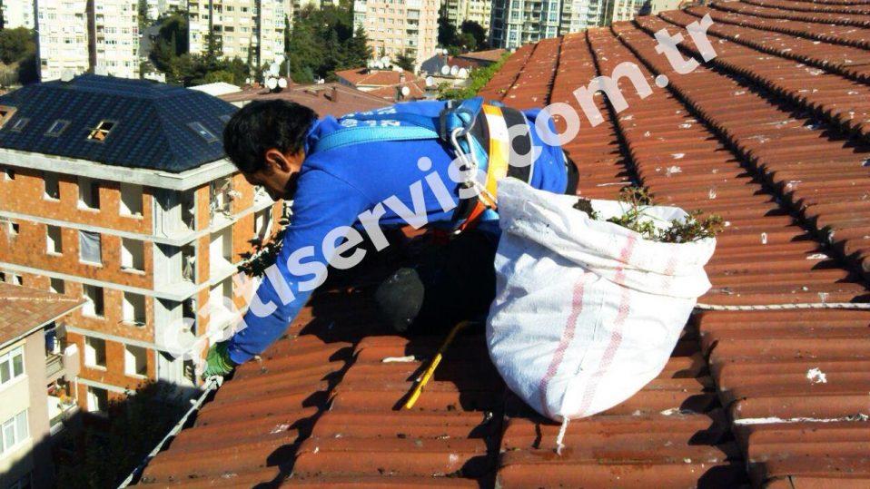 Kadıköy Okul ve Hastane Çatı Bakımı
