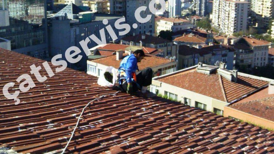 Beşiktaş Apartman Çatı Temizliği