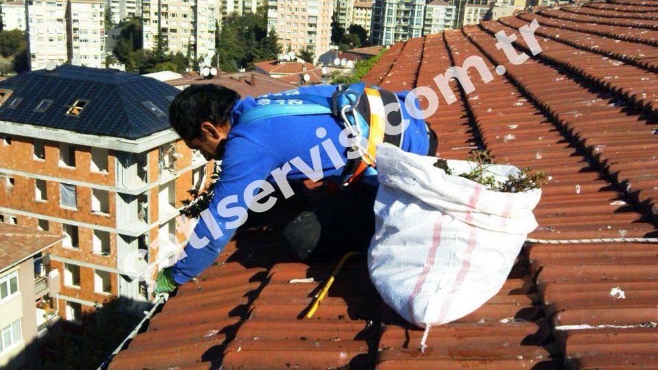 Maltepe Apartman Çatı Temizliği